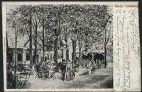 Thiede1906