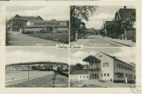 Thiede1964