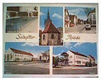 Thiede1975